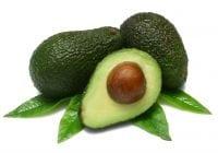 buah avocado